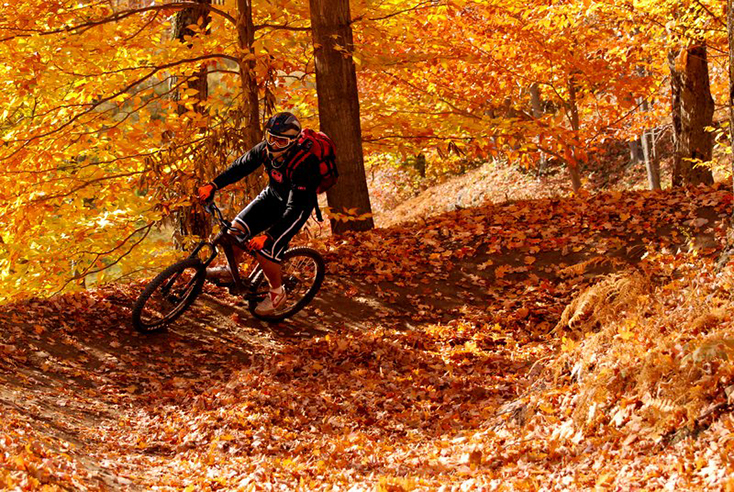 Beginner Mountain Bike Session Sunday Oct 22 9am